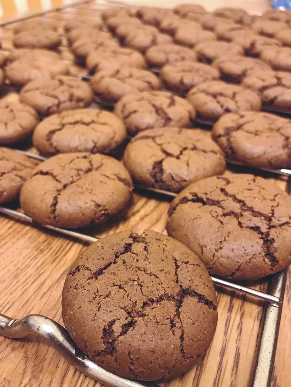 IMG_2208_gingerbreadcookies_sm