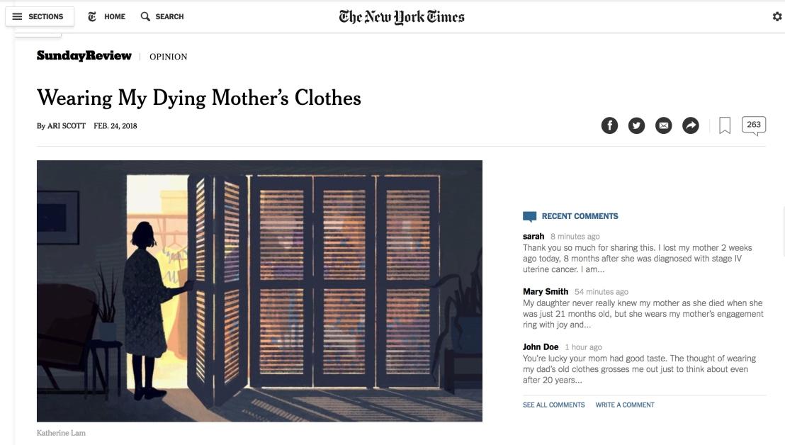 NYT piece screenshot